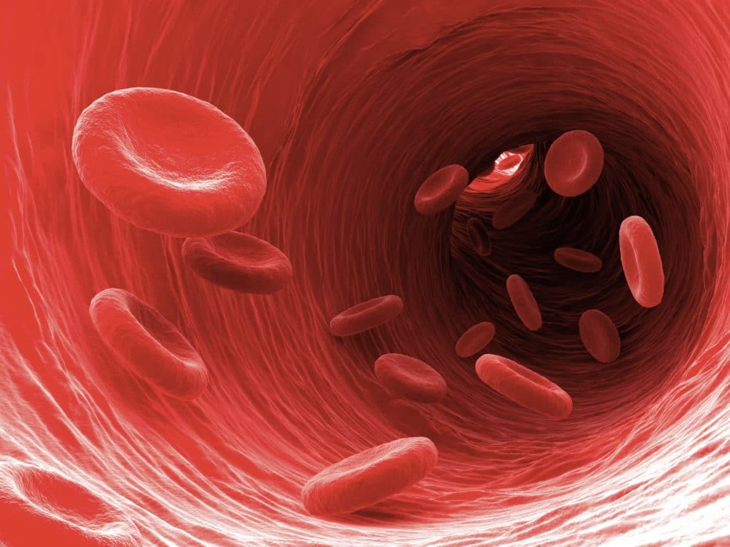 Homeopathie bij een hoge bloeddruk