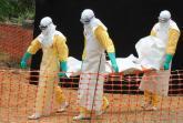 Ebola: op zoek naar het antwoord