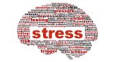 """01/02: Lezing """"Zijn er voordelen aan stress?"""""""