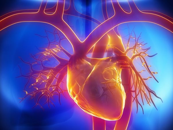 Homeopathie bij hart- en vaatziekten