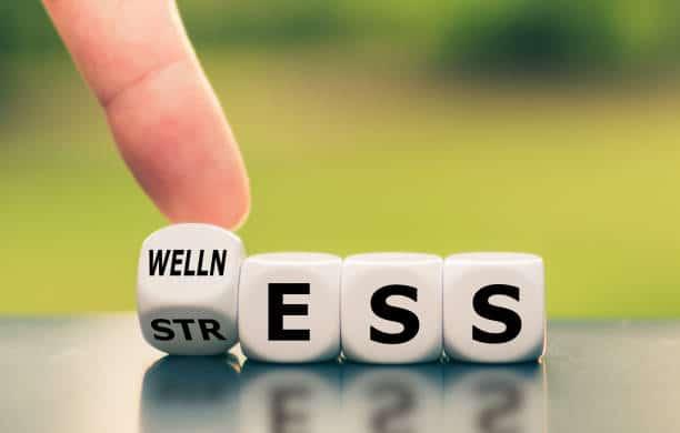 immuunsysteem en stress